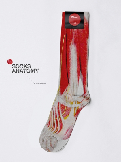 socksanatomy